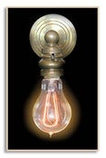 Image of F1920 Double Loop 30 Watt Reproduction Vintage Style Light Bulb
