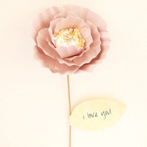 Image of Flower with message