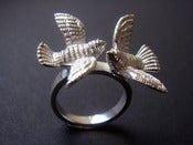 Image of Birds Ring