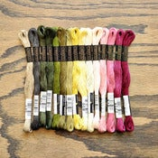Image of Cosmo Embroidery Floss Palette : Celery &amp; Beets