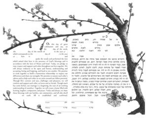 Cherry Blossoms, first bloom Ketubah