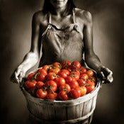 Image of Girl and Tomatoes
