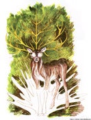 Image of Five-Horned Stag, screenprint