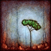 "Image of ""Drip Tree Peace 1 Blue"" <br> Sizes: 4x4"", 6x6"", 8x8"", 12x12"""