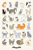 Image of 11x17 Print -  Cat Breeds