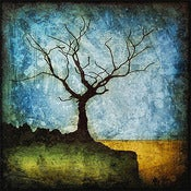 "Image of ""Horizon Tree Dormant 1"" <br> Sizes: 4x4"", 6x6"" & 8x8"""