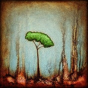 "Image of ""Drip Tree Peace 2"" <br> Sizes: 4x4"", 6x6"", 8x8"", 12x12"""