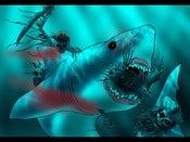 Image of SHARK VS ZOMBIE PIRATES