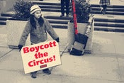 Image of Boycott The Circus