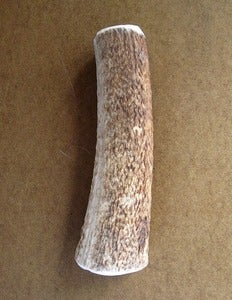 Image of MEDIUM Elk Antler Chew Toy