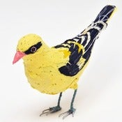 Image of GOLDEN ORIOLE