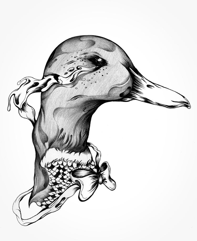 Image of The Duck