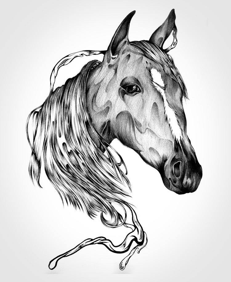 Image of The Horse (Original & Prints)