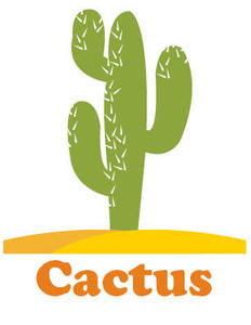 Image of cactus
