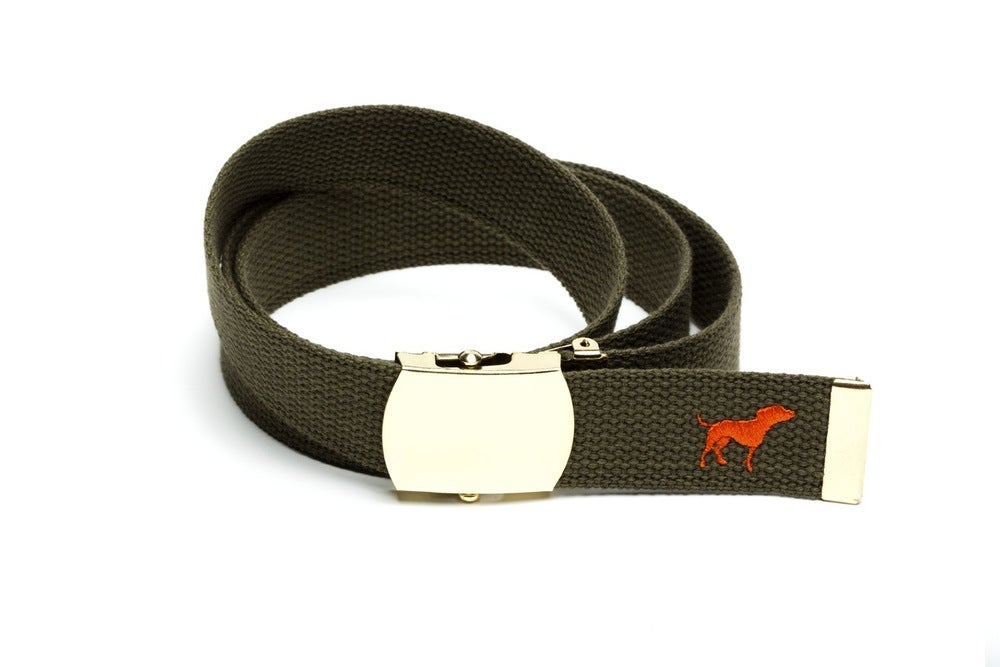 Image of OLIVE TINY TIM WEB BELT