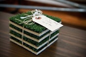 Image of TURF COASTERS