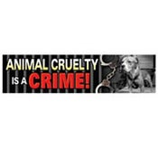 Image of Animal Cruelty is a Crime Car Magnet
