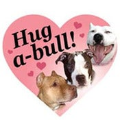 Image of Hug-A-Bull Car Magnet