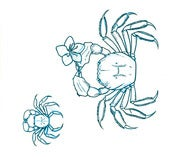 Image of Original Art: Chinese Mitten Crabs