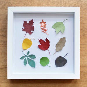 Image of Abscission Framed Paper Leaves