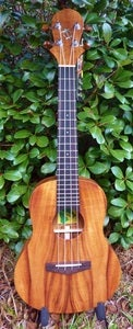 Image of Big Island Honu Koa Tenor w/case