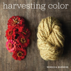 Image of Harvesting Color