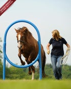 Image of The Horse Agility Club Hoop ©