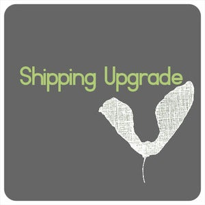 Image of SHIPPING UPGRADE, International AIRSURE.