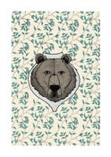 Image of bear on wall paper
