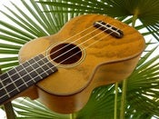 Image of Makai Limited Series LK-50W Willow Soprano