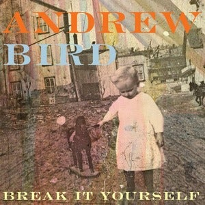 "Image of Andrew Bird ""Break It Yourself"""