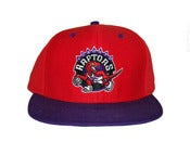 Image of Retro Toronto Raptors Snapback Hat