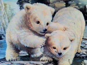 Image of VINTAGE CUTE POLAR BEAR TIN
