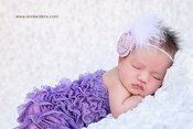 Image of Rose Feathered Headband in Lilac