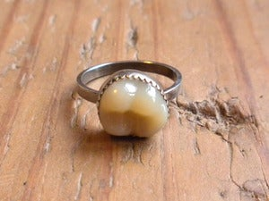 Image of TOOTH ring