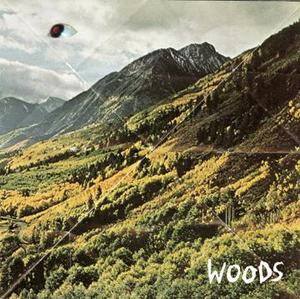 Image of WOODS 'TO CLEAN' 7&quot; **SOLD OUT**