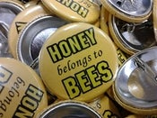 Image of Honey Belongs To Bees Button