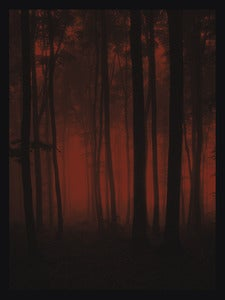 Image of Crimson Forest - Art Print