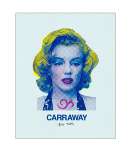 Image of Marilyn Poster
