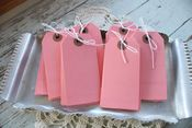 Image of Medium Pink Parcel Tags