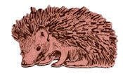 Image of Hedgehog sideway magnet