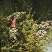 Image of garden gnome