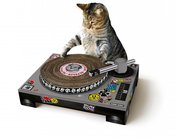 Image of CAT SCRATCHING DJ DECKS