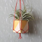 Image of Mini Hanging Planters
