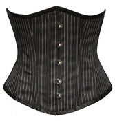 Image of Pinstriped Underbust