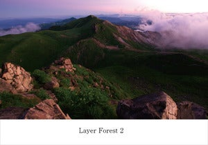 Image of V.A /Layer Forest 2 (AY011)