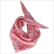 Image of Carré de soie feathers Framboise 68€