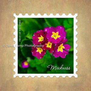 Image of Meekness 10&quot; x 10&quot; Primrose Stamp Motif Canvas from the Fruit of the Spirit Collection