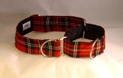 Image of Scottish Tartan Martingale Collar