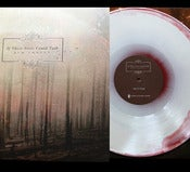 Image of 12&quot; If These Trees Could Talk - Red Forest